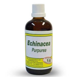 Mordan Echinacea Purpurea 250 ml