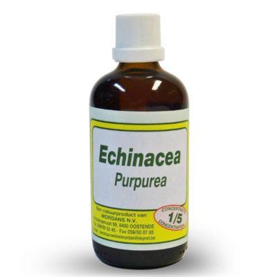 Mordan Echinacea Purpurea 500 ml