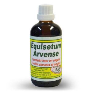 Mordan Equisitum Arvense 250 ml